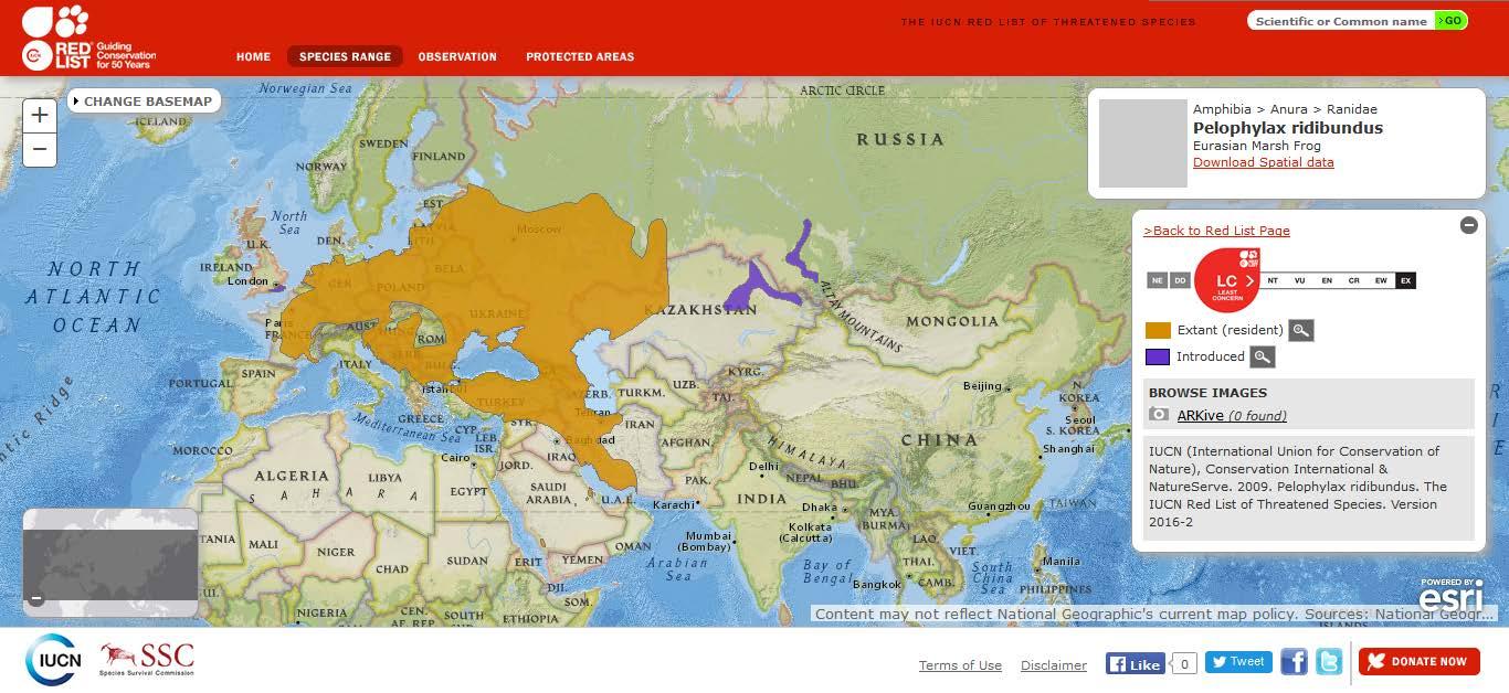 Şekil 4. Ülkemizde de yayılış gösteren ova kurbağasının (Pelophylax ridibundus) dünyadaki yayılışı