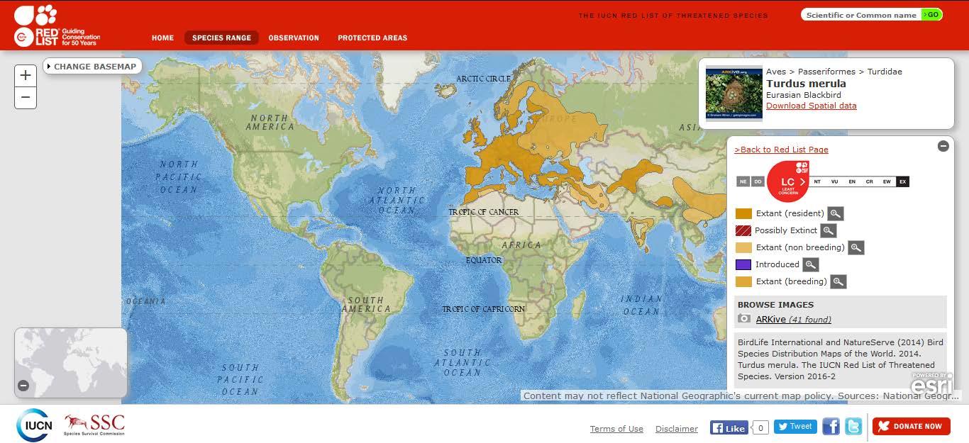 Şekil 7. Ülkemizde de yayılış gösteren kızıl gerdan (Erithacus rubecula) türünün dünyadaki yayılışı