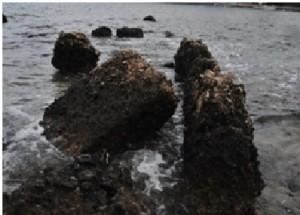 Güney Limanı Bloklar