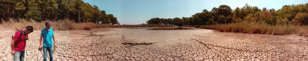 Şekil-11.-Göleti'nin-haziran-ayında-çekilen-panoramik-fotoğrafında-karasallaşmanın-boyutu-görülmektedir.