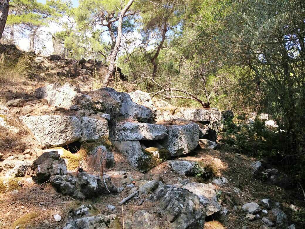 Batı nekropolis'te bulunan sıralı lahitler