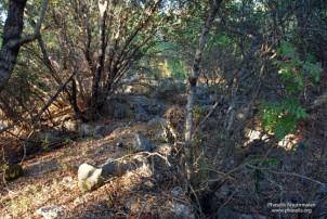 Dikdörtgen mezar kalıntısı