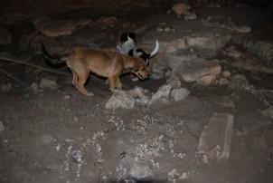 Karstik mağara içindeki mezar kalıntısı